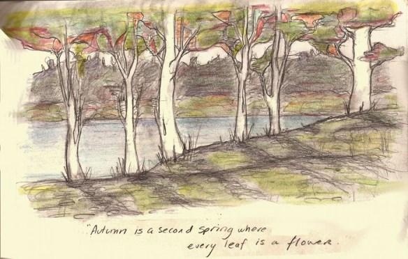 Autumn - Camus small