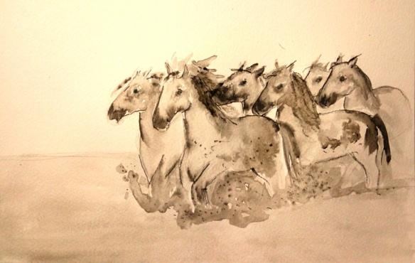 horses-felder